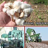 Belting for Ginning Industry